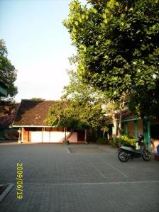 DSCI0251