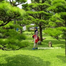 Taman Unik dan Penuh Bunga? ke Taman Bunga Nusantara Aja!